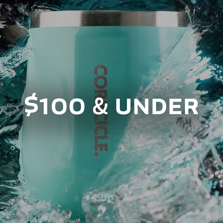 Holiday Gifts $100 & Under